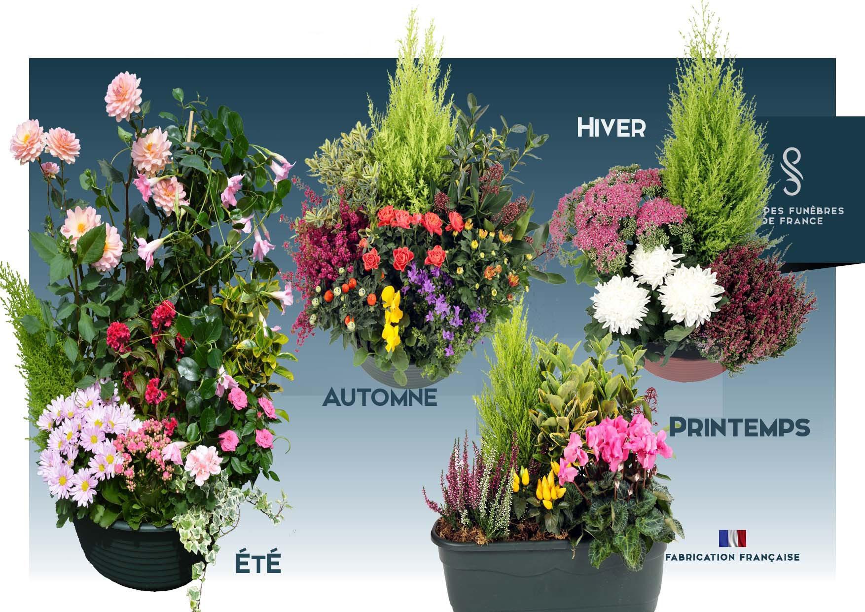 Coupes de plantes de saison